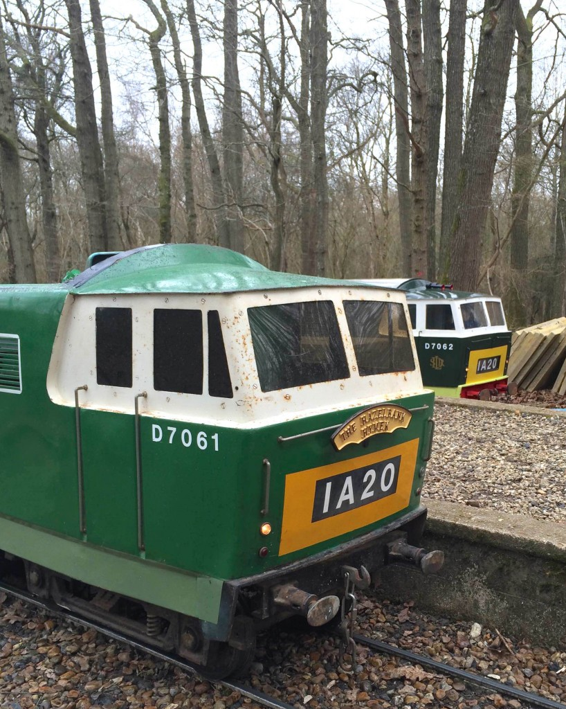 Hymeks in the woods at Ingfield Diesel Day. Picture by Craig Gluyas.