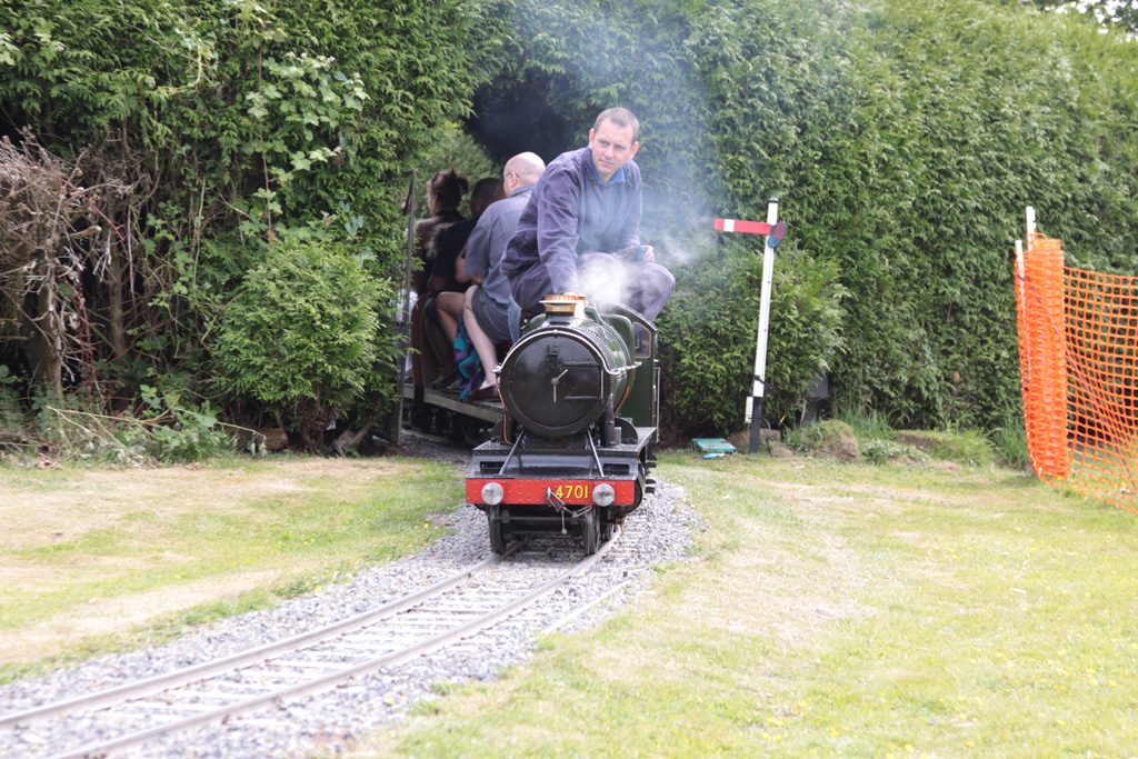 Steaming through the hedge